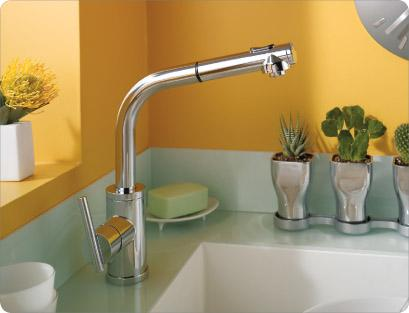 Danze D404558 Parma Single Handle Pull-Out Kitchen Faucet