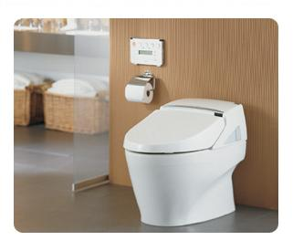 Toto Neorest 600 MS990CGR Tankless Toilet with Itegrated Washlet