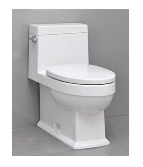 Icera Karo C-2640 One-Piece Comfort Height Elongated Toilet with soft close seat