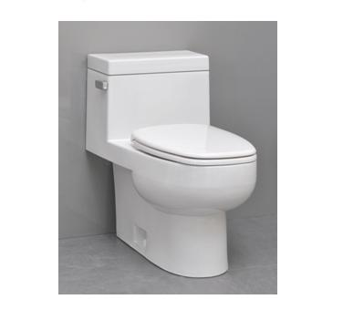 Icera Vista C-2610 One-Piece Comfort Height Elongated Toilet with soft close seat